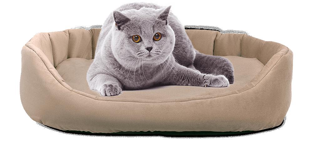 Лежак для кошек Koton